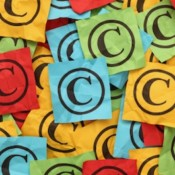 Protect Your Website Content Against Theft: Case Study